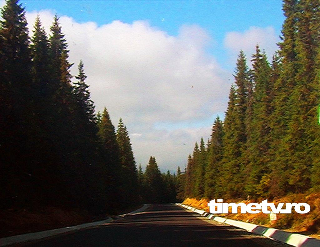 transalpina-drumul-regelui-verdeata-brazi-paduri-cer-nori