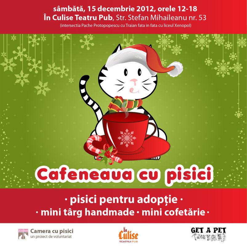 Cafeneaua cu pisici, In Culise Teatru Pub, Camera cu Pisici