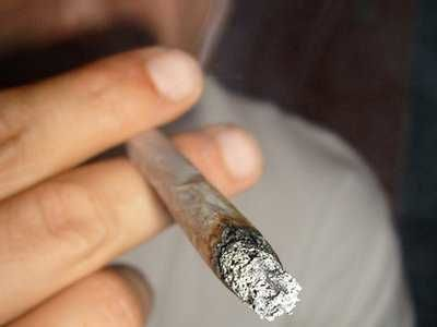 fumatori-de-marijuana-weed-iarba-verde-v-sensi-joint-gigi-blunt-timetv