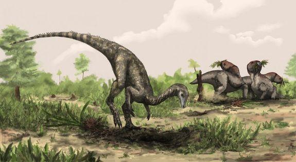 nyasasaurus-primul-dinozaur-din-lume