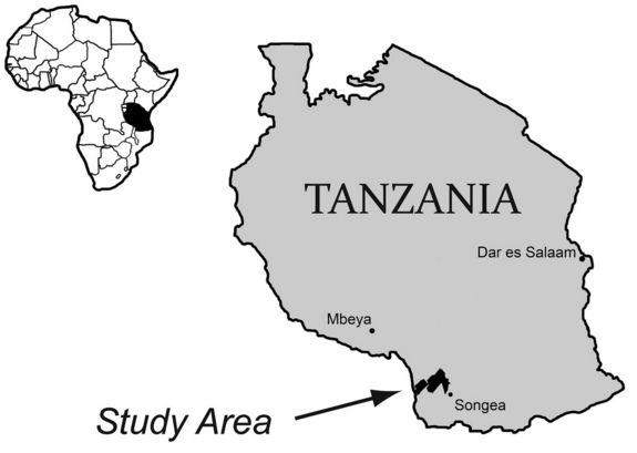tanzania-primul-dinoozaur-din-lume