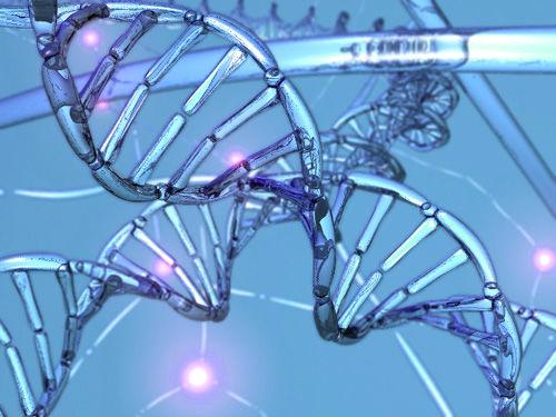 genomul=profesorul-George-Church-Neanderthal-adn-clona