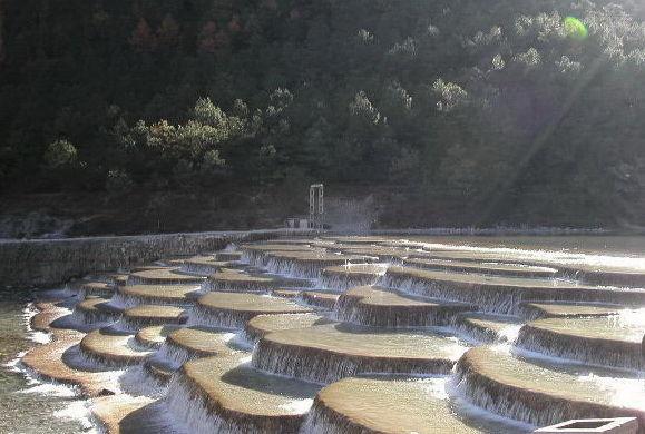 piscine naturale china-timetv
