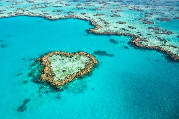 recif in forma de inima australia-timetv