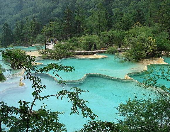 piscine naturale-timetv