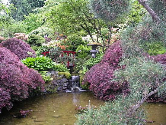 gradini botanice din lume-timetv
