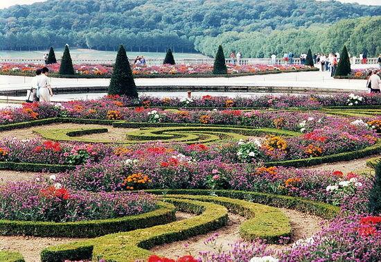gradini botanice-timetv