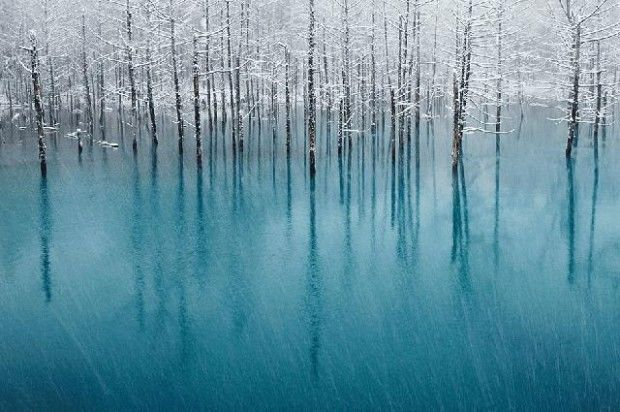lacul-japonia