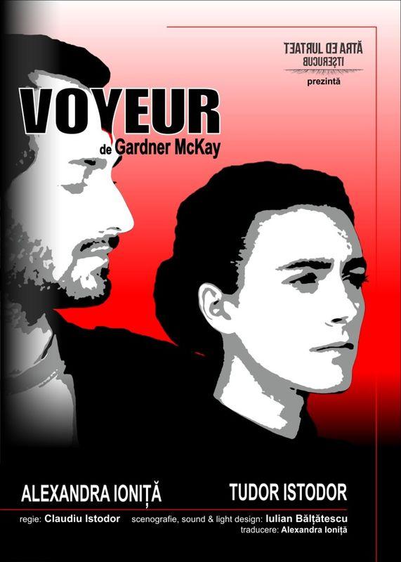 poster_Voyeur_timetv