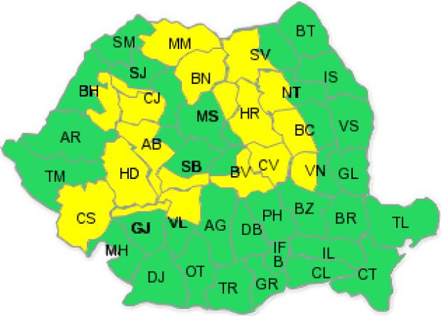 cod-galben-zapada-1