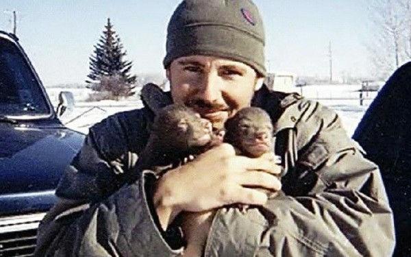 adoptie-urs-pui-de-urs