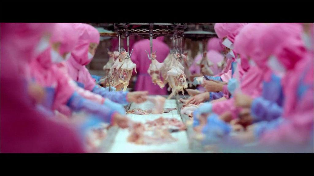 consum excesiv de carne dezvoltare personala personal development